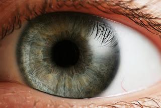 لغة العيون الواسعة