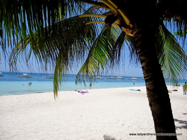 Alona Tropical Beach Resort Bohol