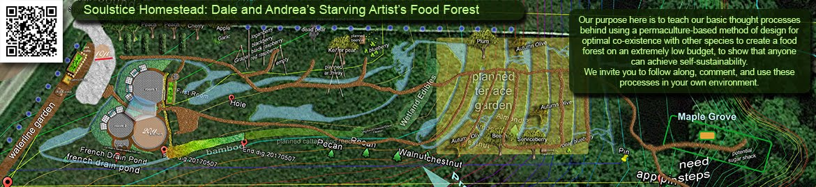 Soulstice Homestead: Dale and Andrea's Starving Artists' Food Forest