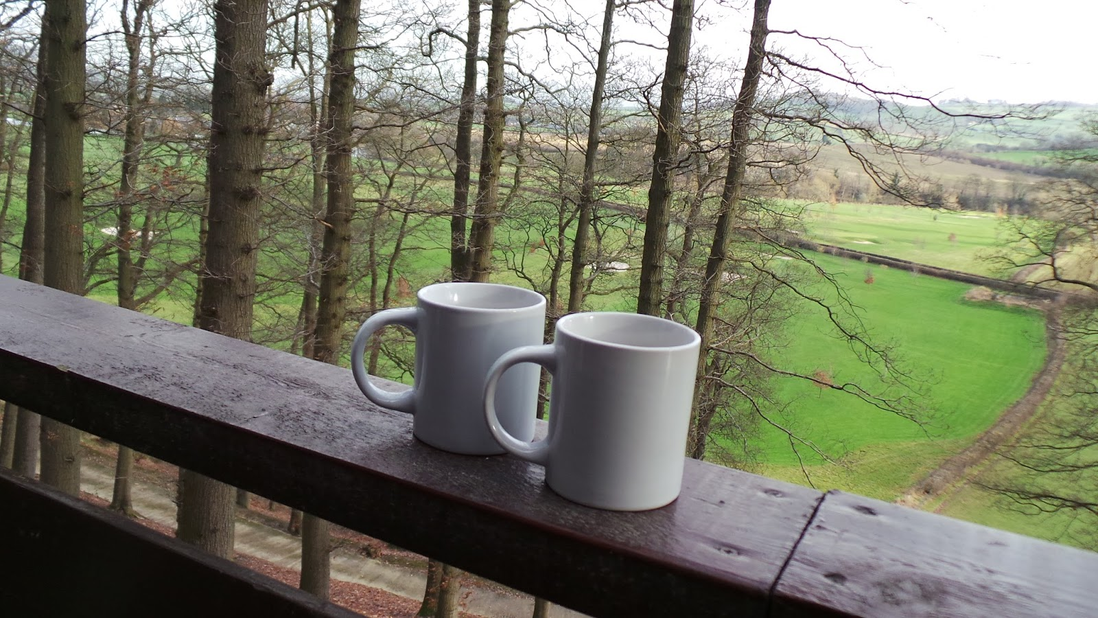 Mountain Lodge, Penyllwynn Lodges, Powys, Montgomery Wales, Photo, Review, Blog