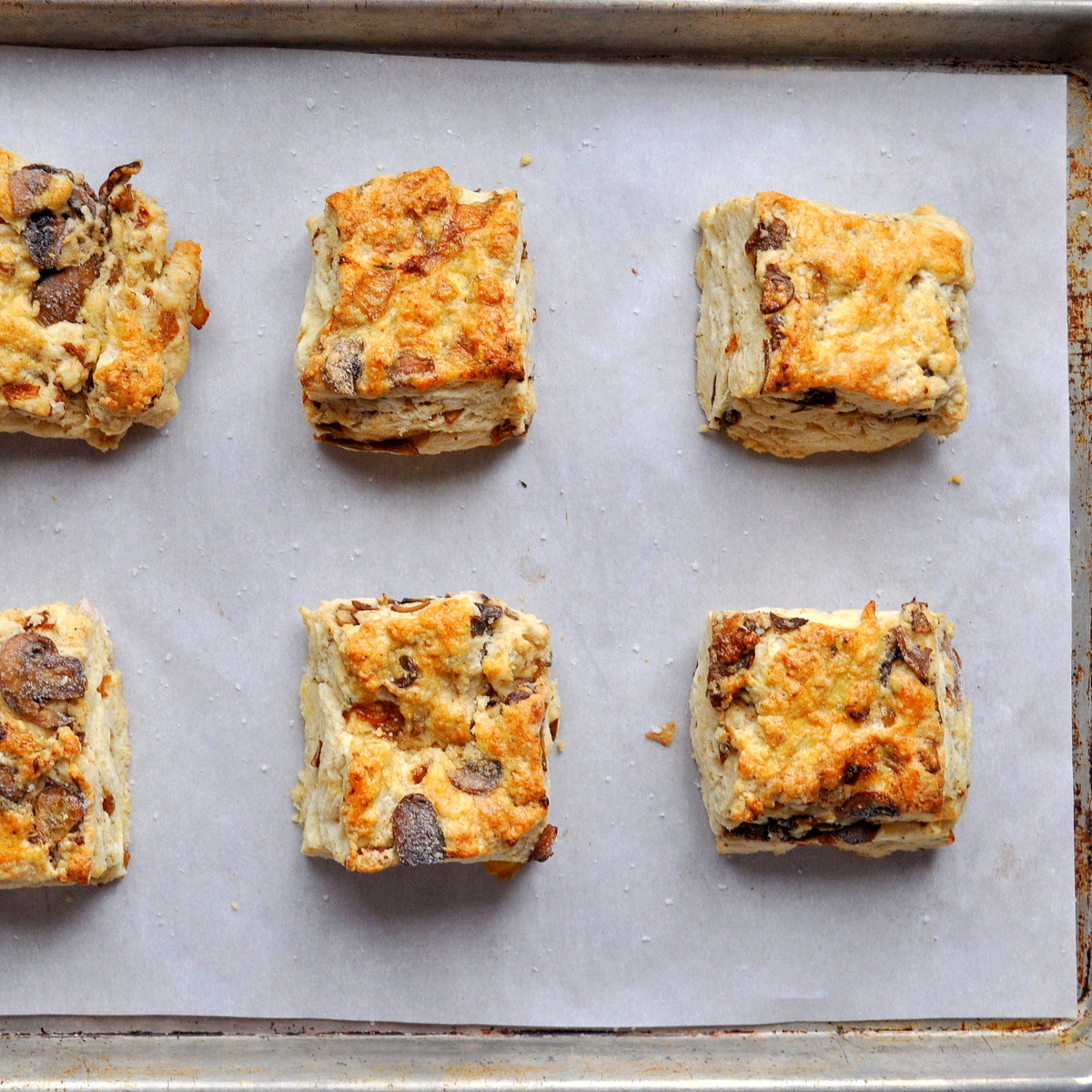 BREANNA'S RECIPE BOX: Caramelized Mushroom and Onion Biscuits
