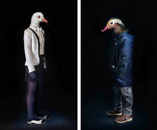 14-Dove-and-Duck-Miguel-Vallinas-Segundas-Pieles-Second-Skins-Smartly-Dressed-Animals-www-designstack-co