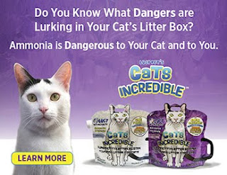 Lucy Pet Cats Incredible Litter