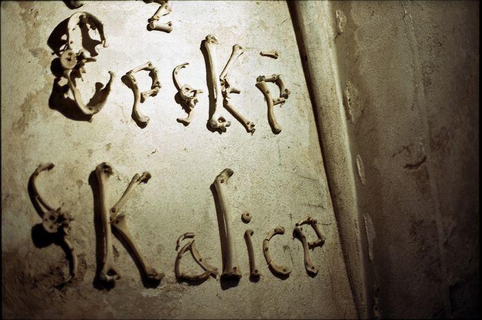 骨で出来たアルファベット