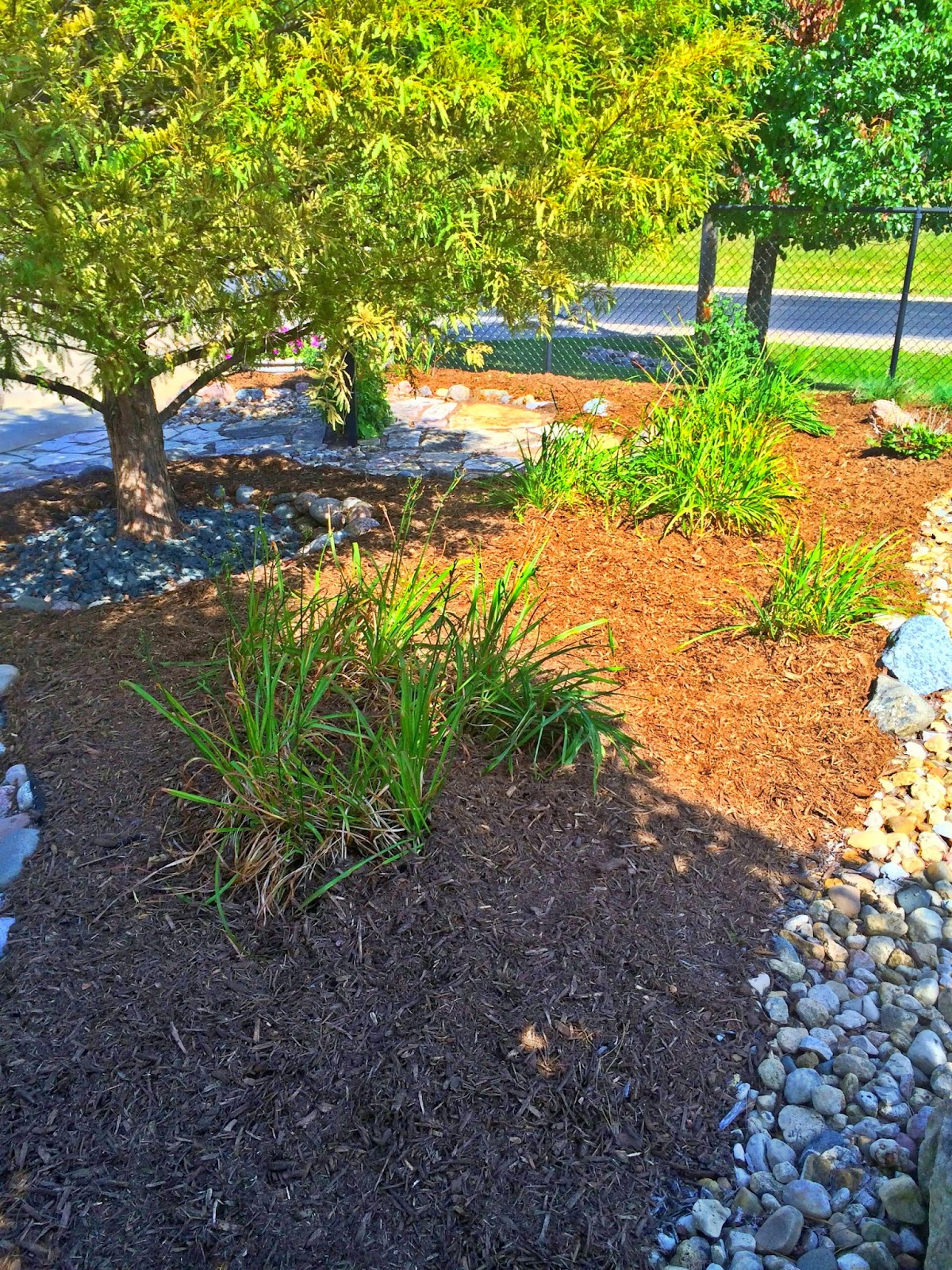 Landscaping Quad Cities - Landscaping In Quad Cities