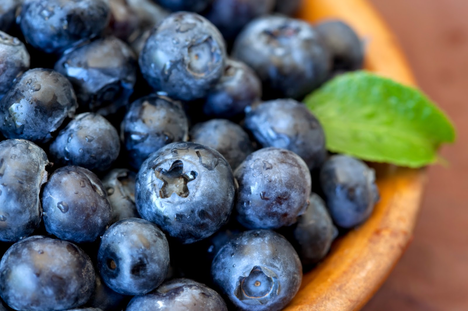 The Amazing Health Benefits of Blueberries   In The ...