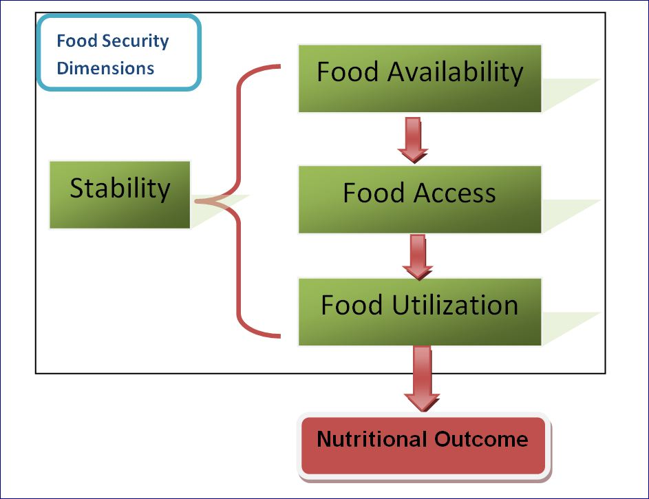 definition of concepts in food security politics essay The meaning of national security politics essay print  development of security can be attributed to the fact that the concept defies simple definition .