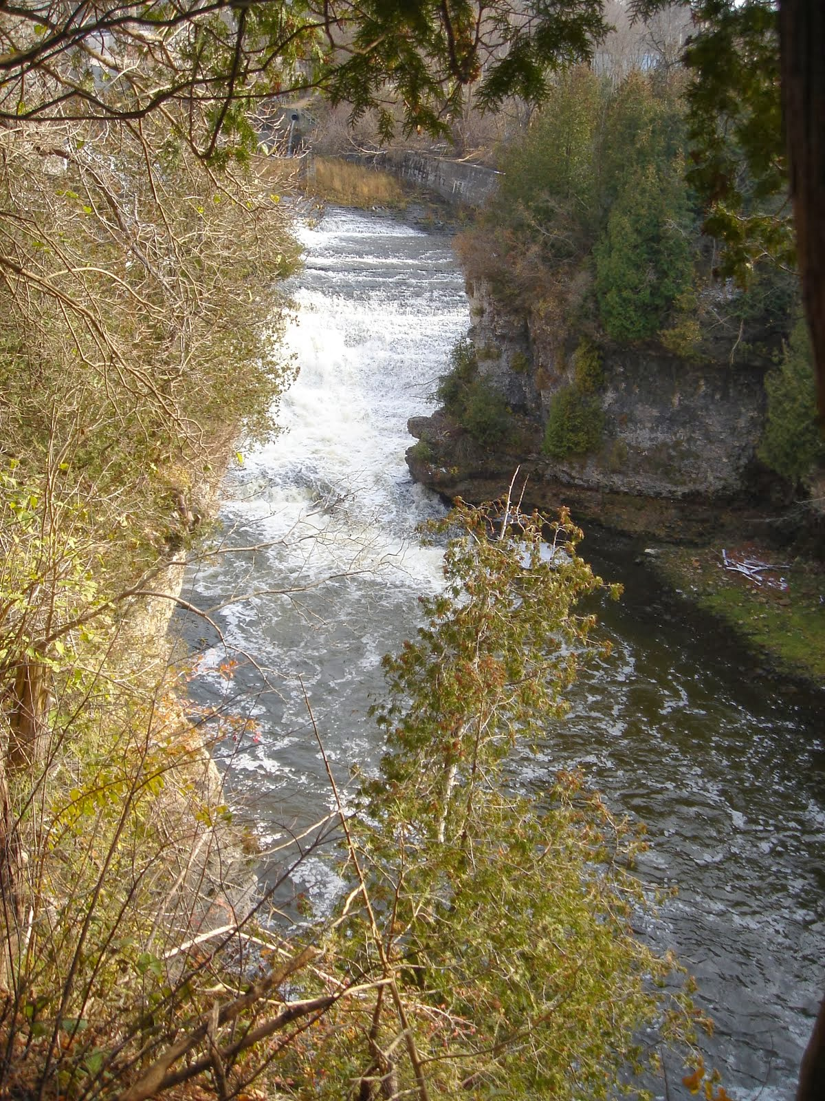 Elora Gorge
