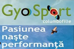 GYO SPORT
