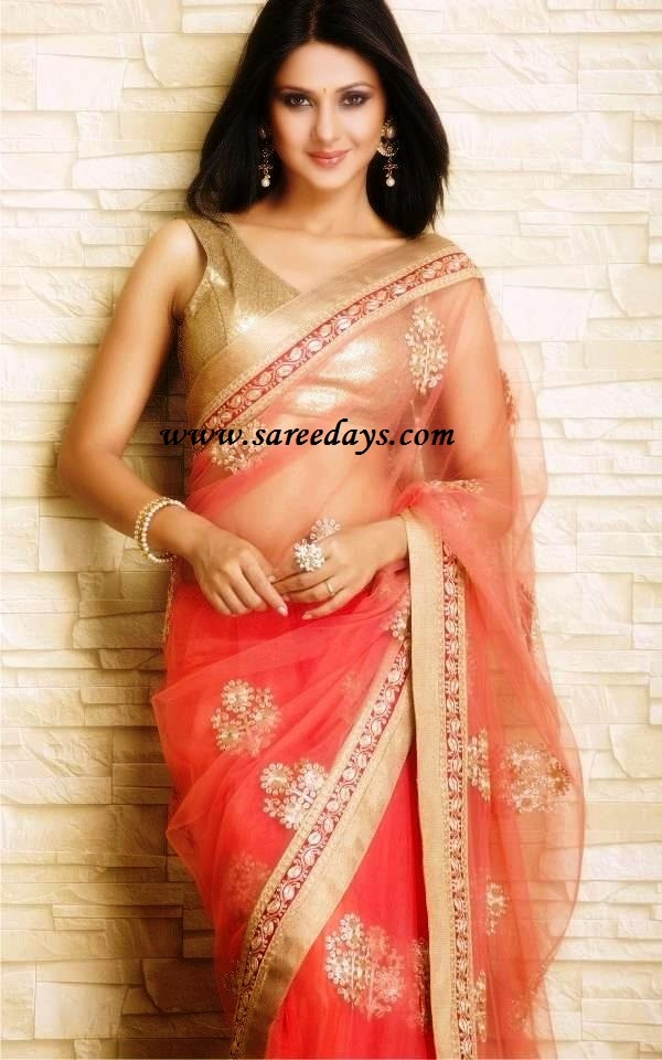 Latest saree designs jennifer winget in peach netted designer saree checkout actress jennifer winget in peach netted designer saree with gold motifs and gold border and paired with matching sleeveless blouse altavistaventures Image collections