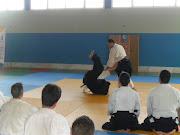 About Luis Mochón Aikido Seminar in Roquetas de Mar