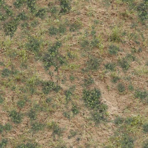 TR_Nat_Ground_Grass_2_Df.jpg
