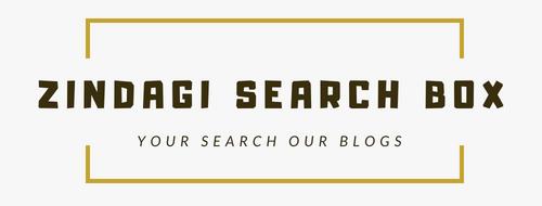 Zindagi Search Box