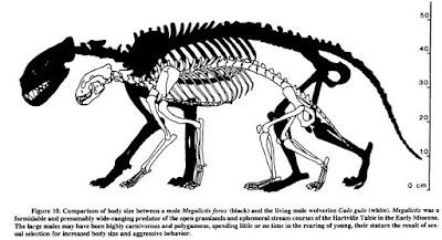 Prehistoric Wolverine