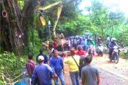 Tebang Pohon Beringin Angker, Dinas PU Pati Ketakutan