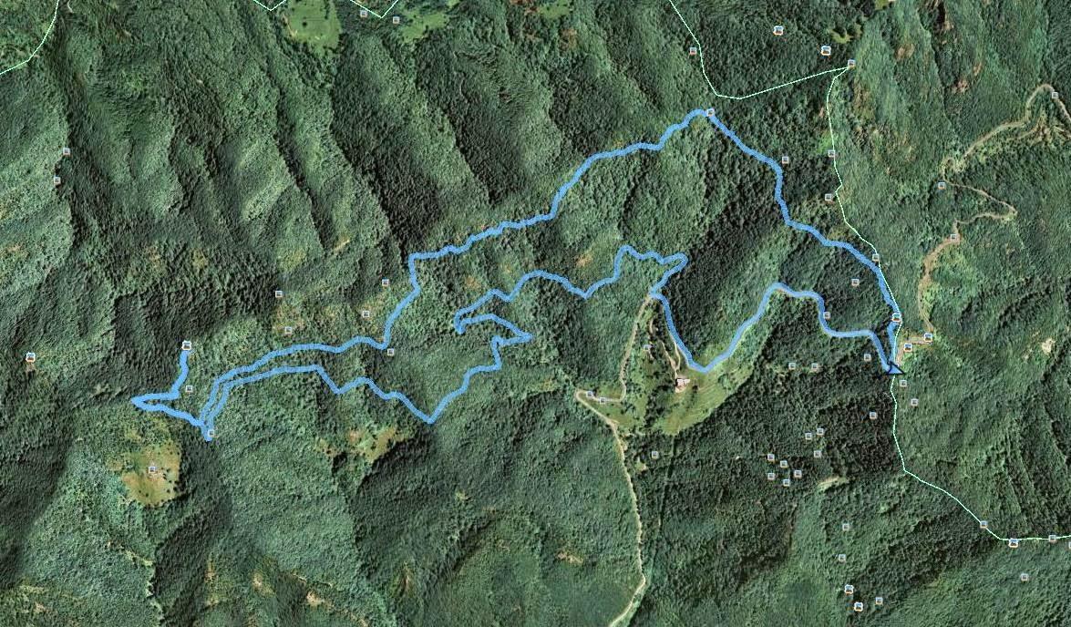 Recorregut: Coll de Bracons-Puig de l'Àliga