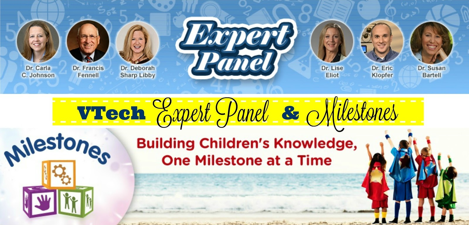 VTech expert panel and milestones