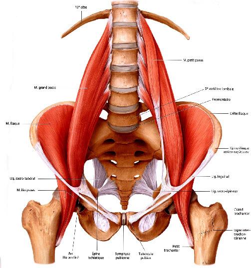 Maha Yoga Open Your Hip Flexors For Good