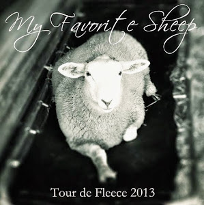 2013 Tour de Fleece