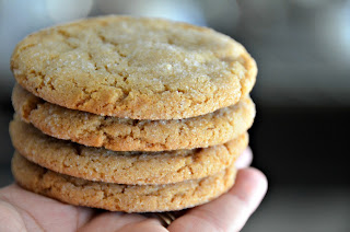 Apple Cider Molasses Cookies with Burnt Sugar Bits | Cheesy Pennies