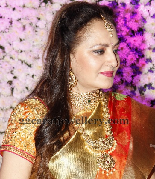 Jayapradha at her Son Wedding Reception