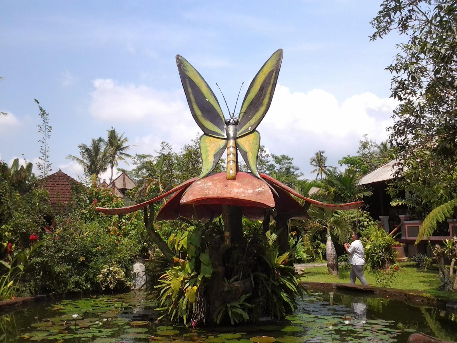 Berlibur Di Taman Kupu Kupu Bali Info Wisata Di Bali