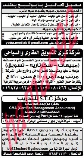 وظائف جريدة الوسيط الصعيد اليوم الجمعة 18/10/2013, وظائف خالية مصر 18 اكتوبر