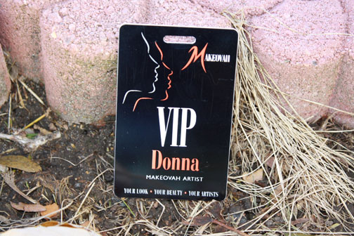Vip Access Pass Having Access or Vip Passes is