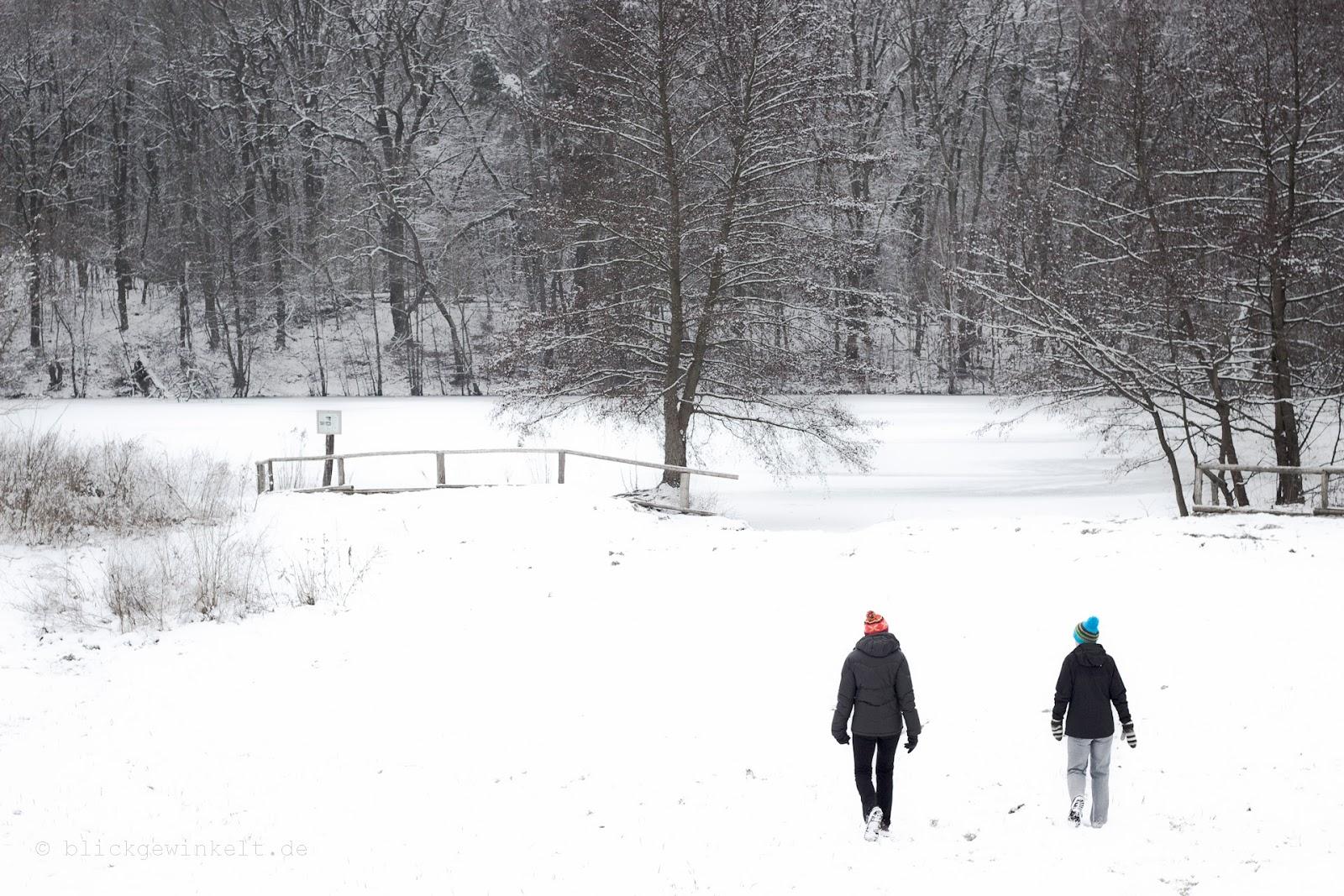 Schnee im Berliner Grunewald