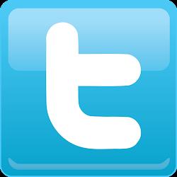 Sigue a Porno reflexivo en Twitter
