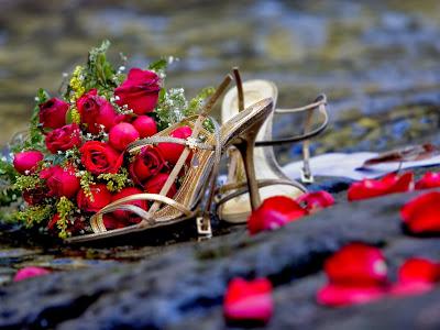 صور وخلفيات باقات ورود 2014 رومانسية - موقع جزيرة خيال