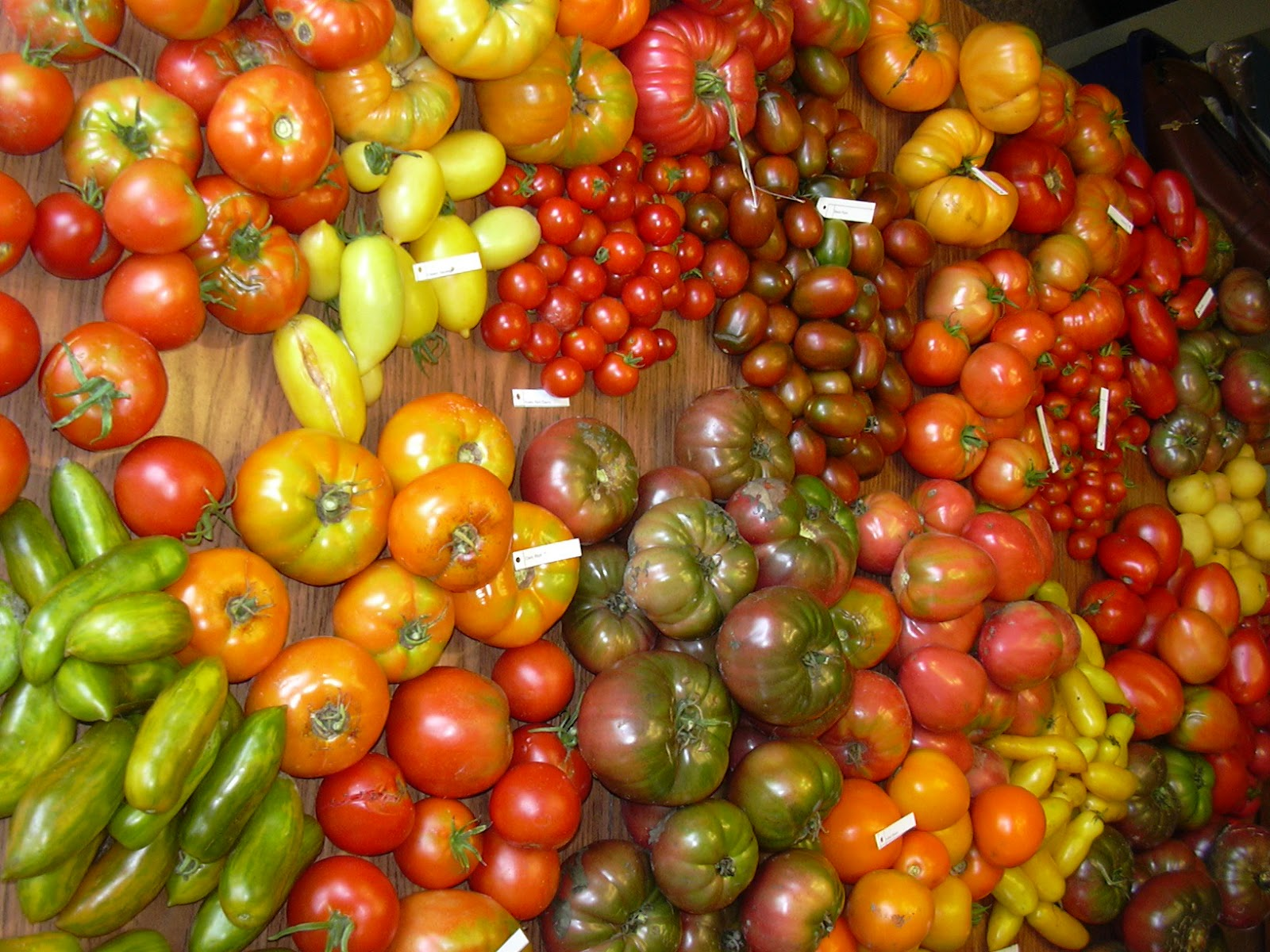 learning how to live a healthy life how many types of tomatoes, Natural flower