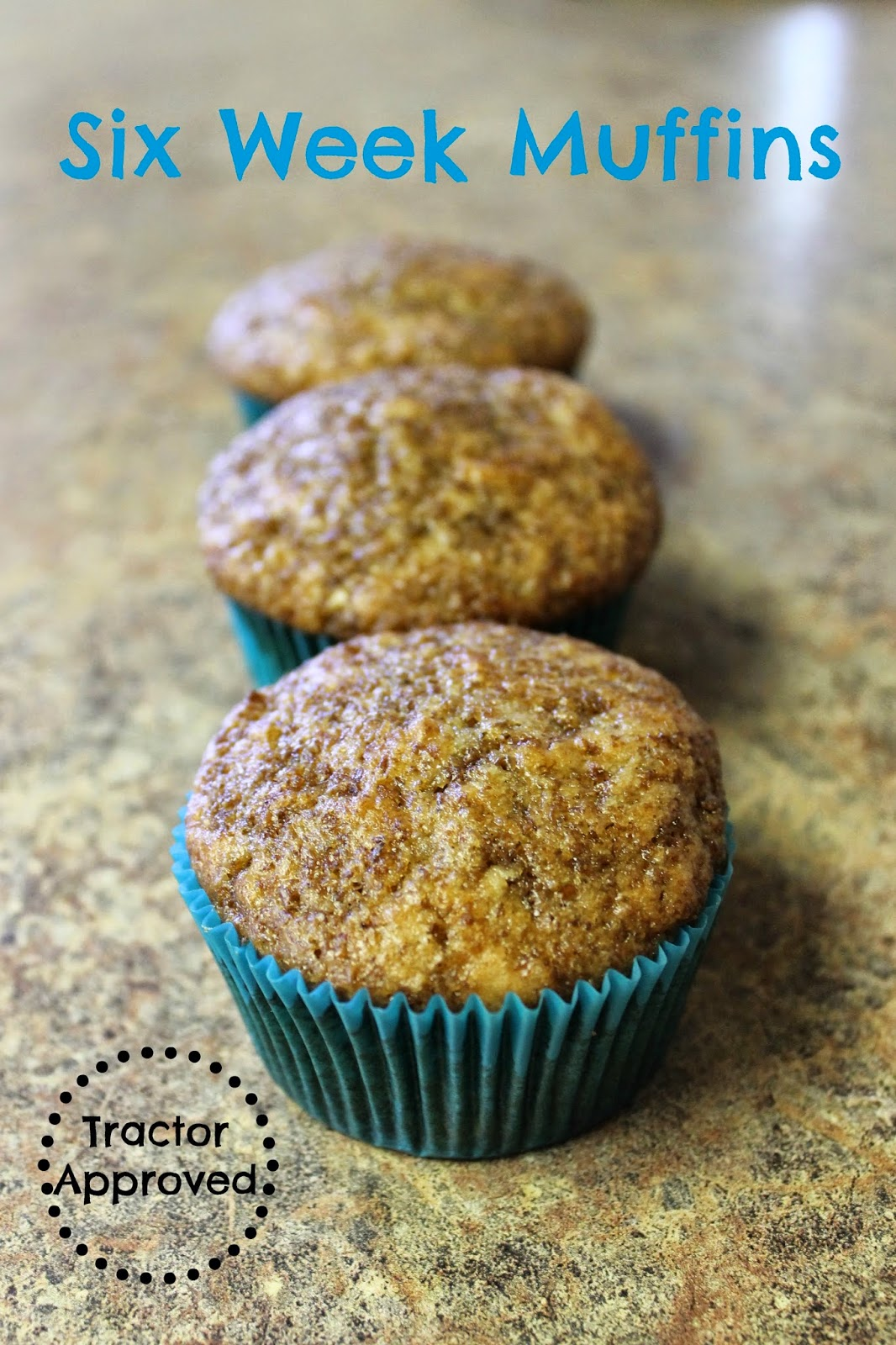 Six Week Muffins - fresh muffins for up to six weeks
