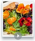 Nasturtium Recipes & Quick Tricks