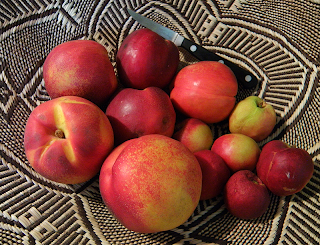 Three types of Nectarines in Basket