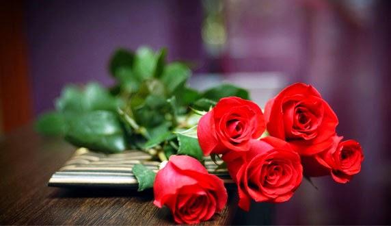 Manfaat Bunga Mawar bagi Kesehatan