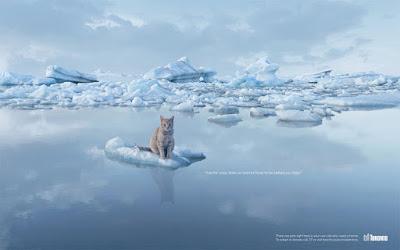 No al calentamiento global, cuida los animales