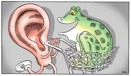 CHOOSING A SOUND SYSTEM