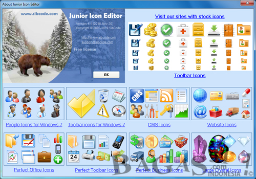 Junior Icon Editor 4.1 Full 2