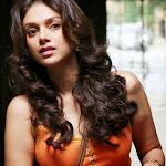 Aditi Rao hot photo shoot