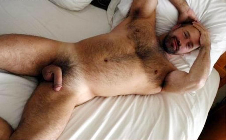 Hairy dads in bed with gay twinks kissing