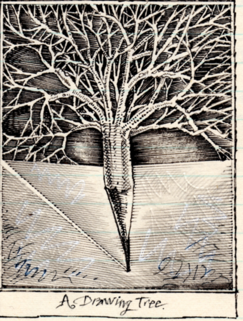 Tree Stick Drawing 'a Drawing Tree'