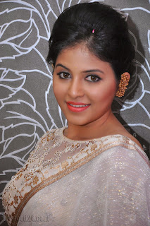 Anjali latest Glamorous pics in saree 013