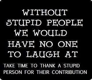 Without Stupid People, No one would have Laughed