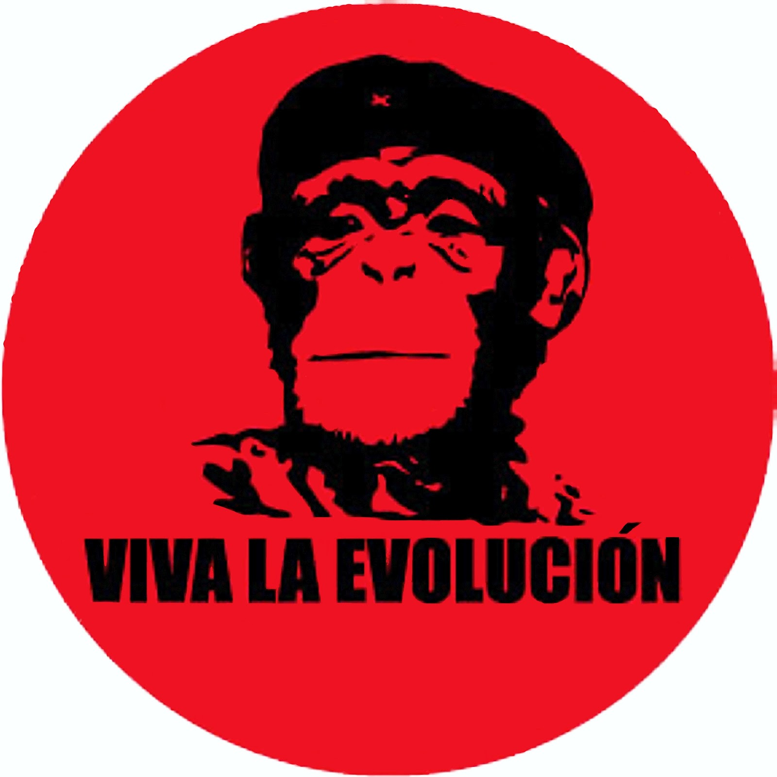 Viva la Evolucion Wallpaper Viva la Evolución