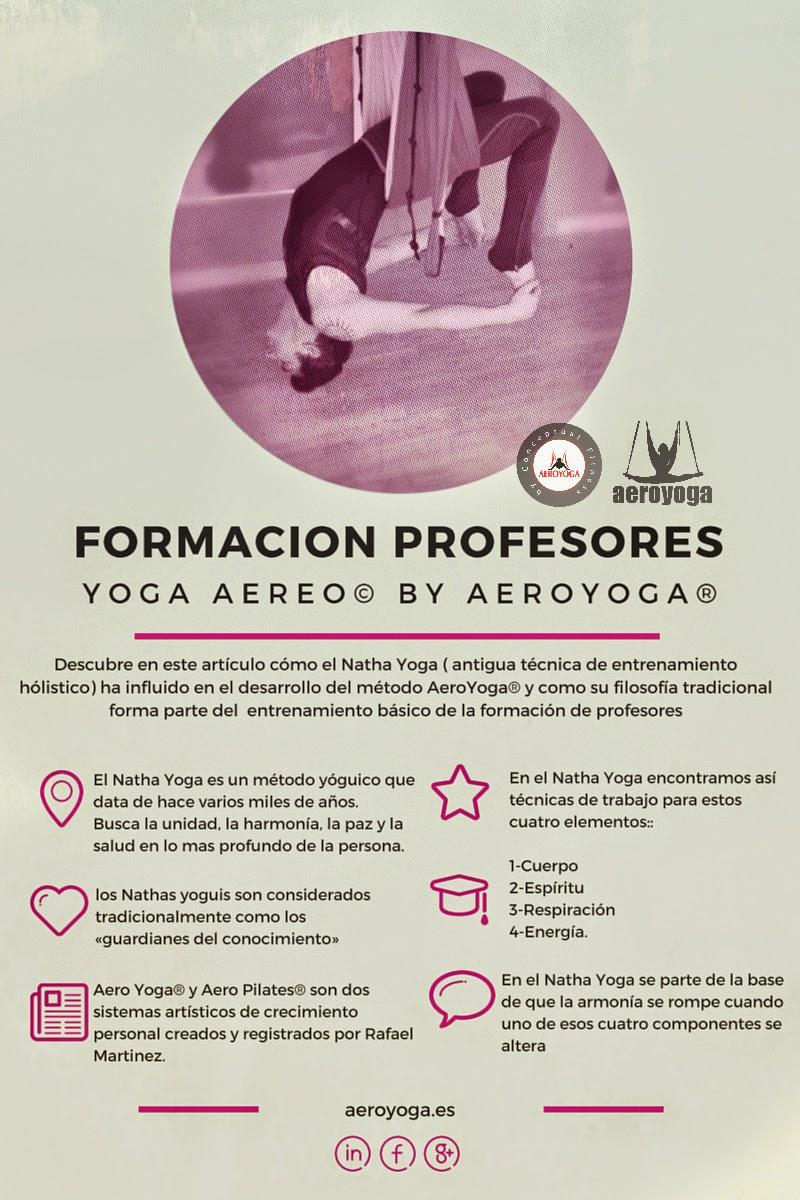 www.formacionprofesoresyogaaereodonosti.com