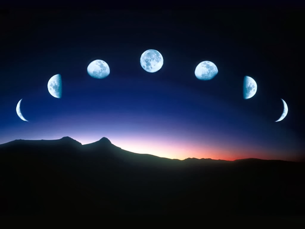 Moon Phase Chart January 2015 | Search Results | Calendar 2015