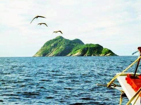 Đảo rắn: Thiên đường ẩn náu của những tử thần