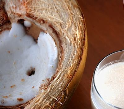 Coconut Milk in the Thermomix