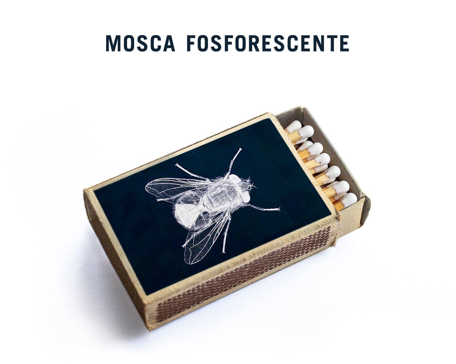 Mosca Fosforescente